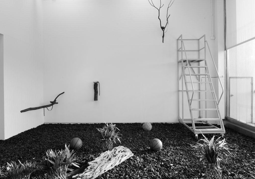 罗智信《饲养箱》2014 courtesy of the artist. LuoZhixin, Terrarium, 2014, Courtesy of the Artist.