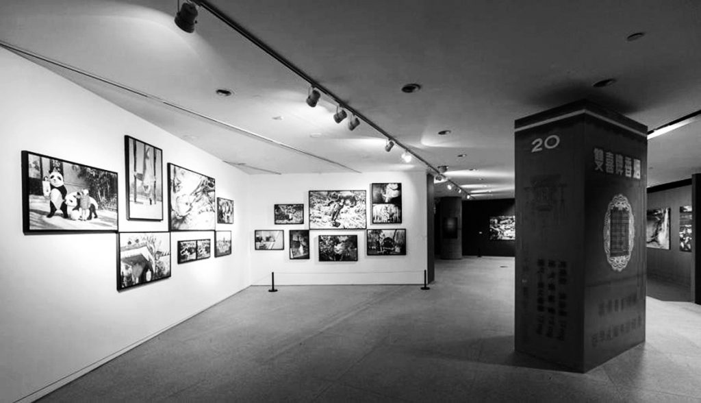 "Unfamiliar Asia, Beijing International Photography Biennial, 2015, Space 1 2015""陌生的亚洲""北京摄影双年展展览现场 1"