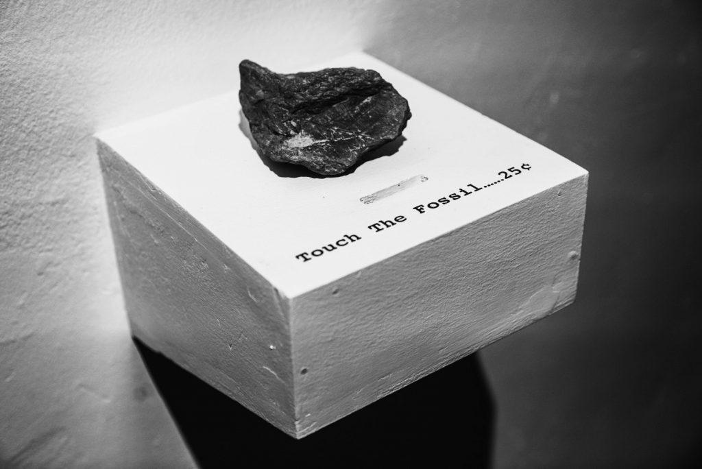 Touch The Fossil… 25¢, 2016, fossil, plinth, dimensions variable 施昀佑作品《摸一下二角五分( 一 )》,2016年。化石,基座,尺寸可变。